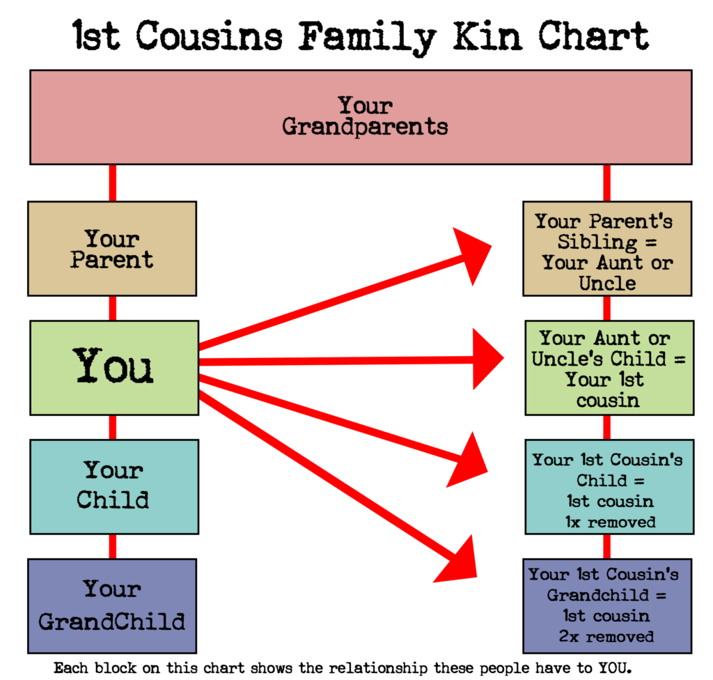 Family relationship chart -1st cousins