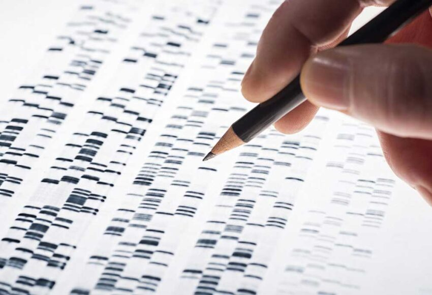 Person holding a pencil as to mark on a DNA report