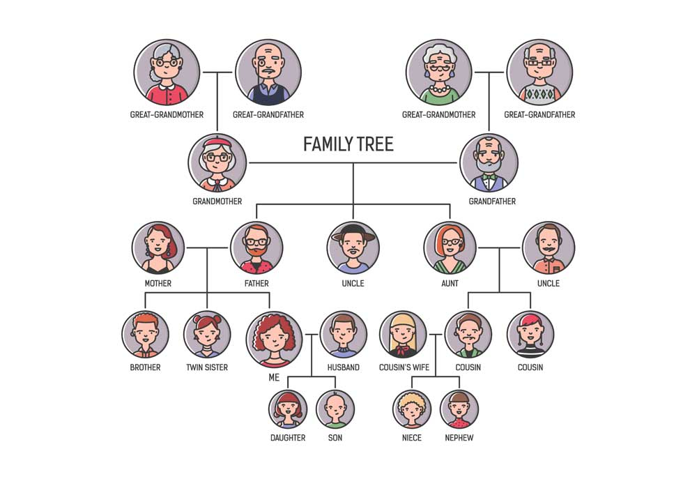 family tree chart on white background