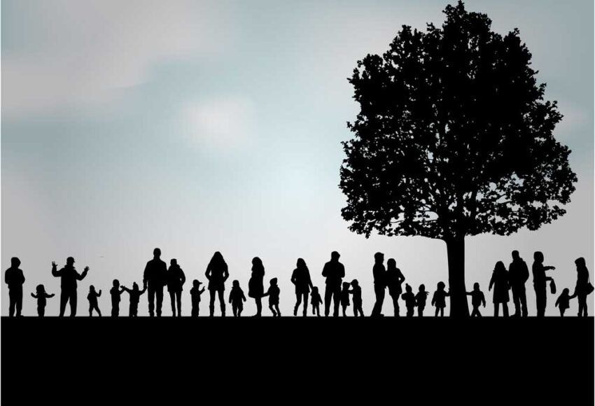 Starting a family tree -Where do you begin?