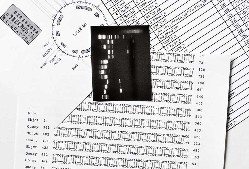 Scatter of black and white DNA reports