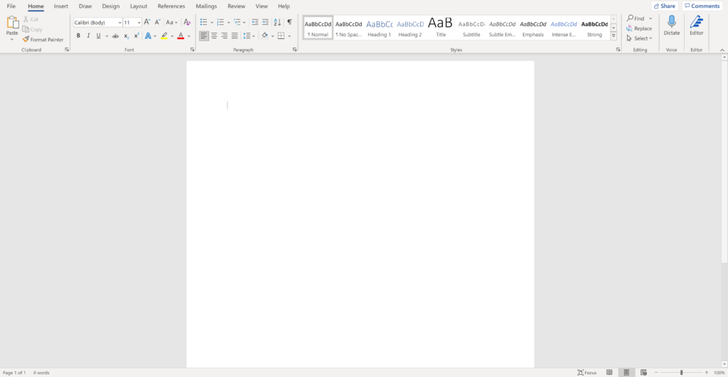 Screen shot of a blank word document